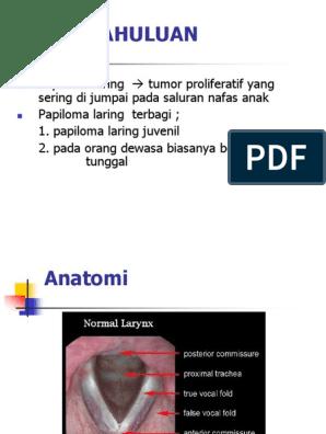 papiloma laring pada anak virus del papiloma i