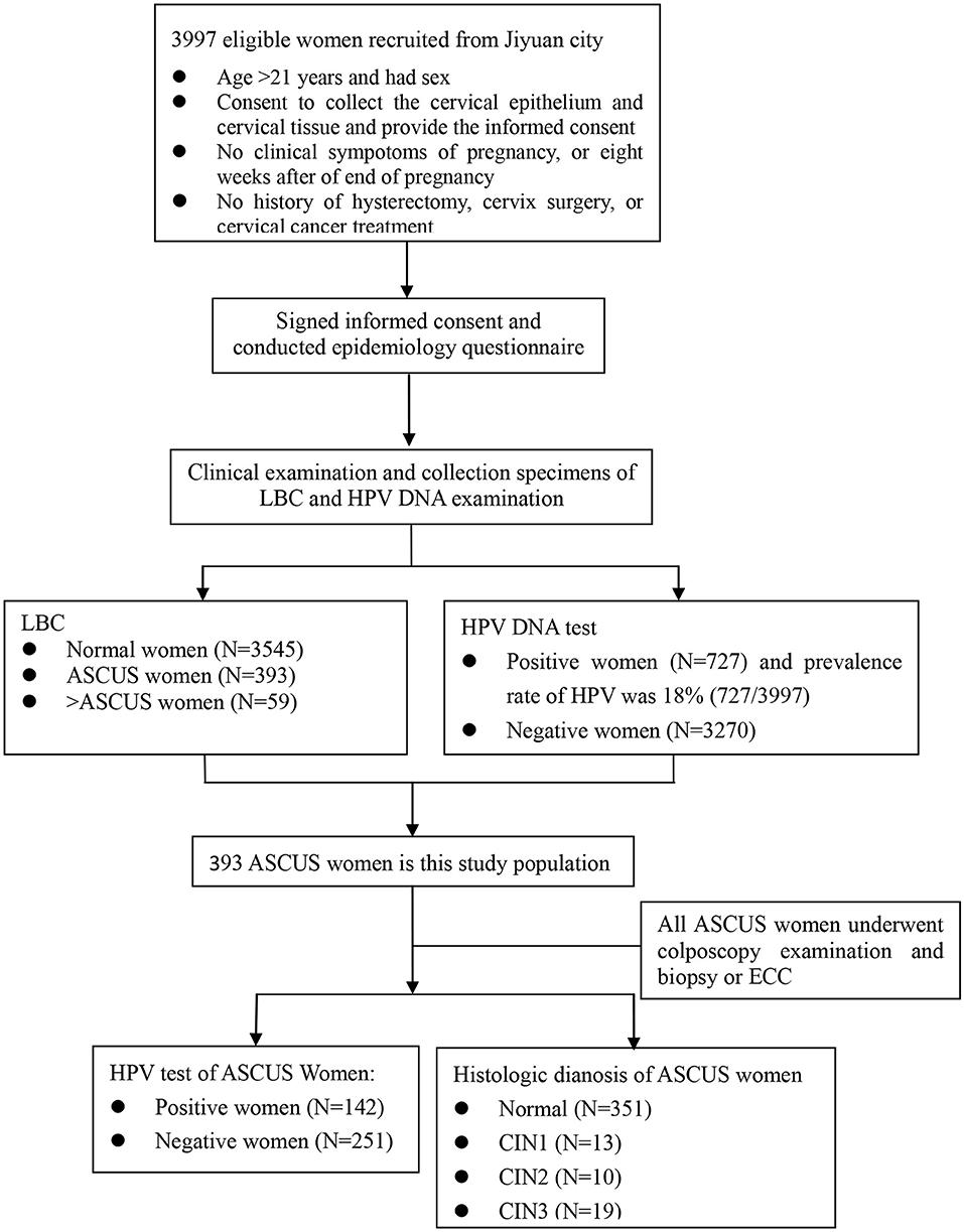 HPV și cancerul de col uterin - Hpv high risk positive ascus
