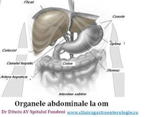 Semnele şi factorii declanşatori ai cancerului de colon
