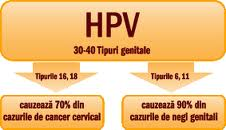 how many hpv cause cancer