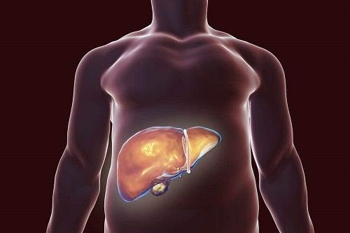 Detoxifierea ficatului - cea mai bună și sigură metodă - csrb.ro