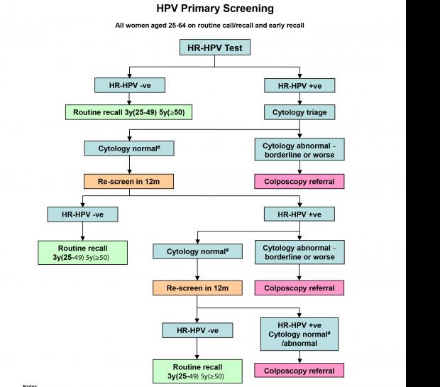 Hpv treatment plan - Hpv treatment pregnancy - csrb.ro