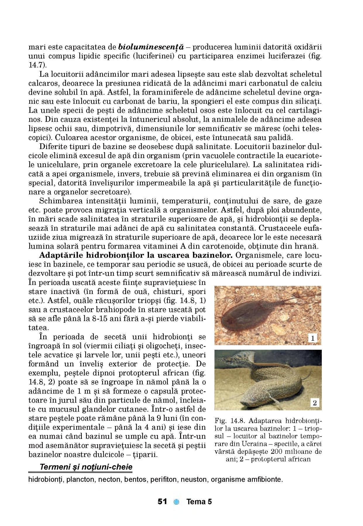 Infectie parazitara - Am nevoie de un sfat. - Forumul Softpedia
