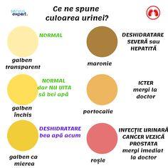 Infectiile de tract urinar (ITU): cauze, simptome, tratament
