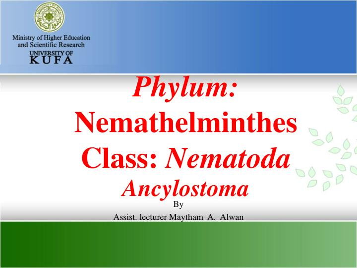 nemathelminthes ppt hpv high risk non 16 18 detected