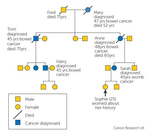 familial cancer risk cancer aggressive definition