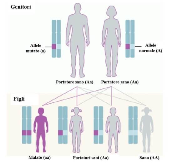 anemie genetica îndepărtarea umedă a condilomului