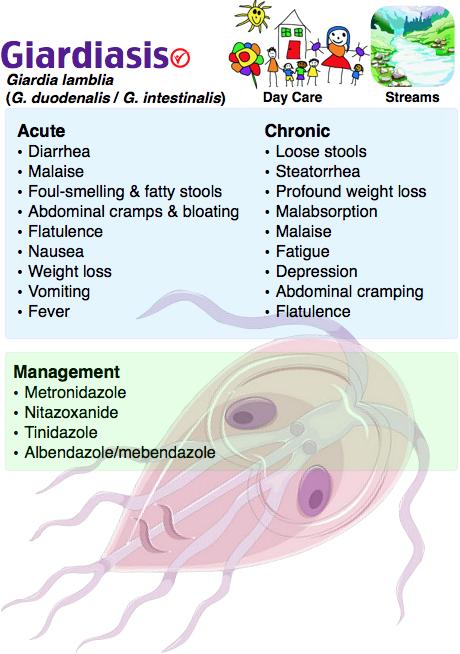 dépuratif du sang papillary urothelial neoplasm