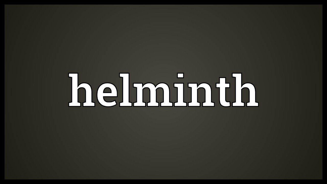 Meaning for helminth - Test Editor 1