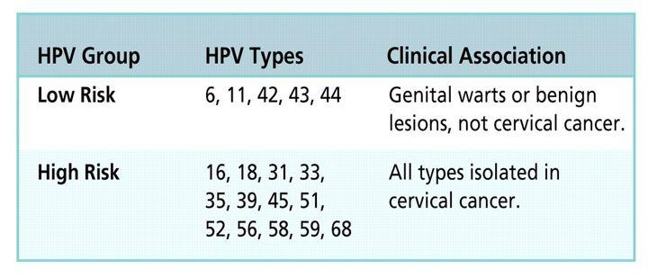 hpv high risk type 18 modul în care cad condiloamele după cauterizare