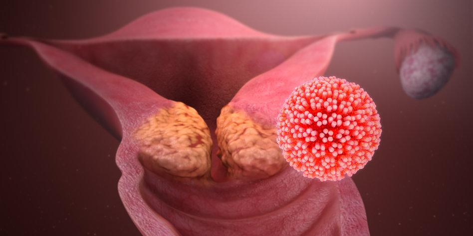 Hpv virus ansteckung frau mann