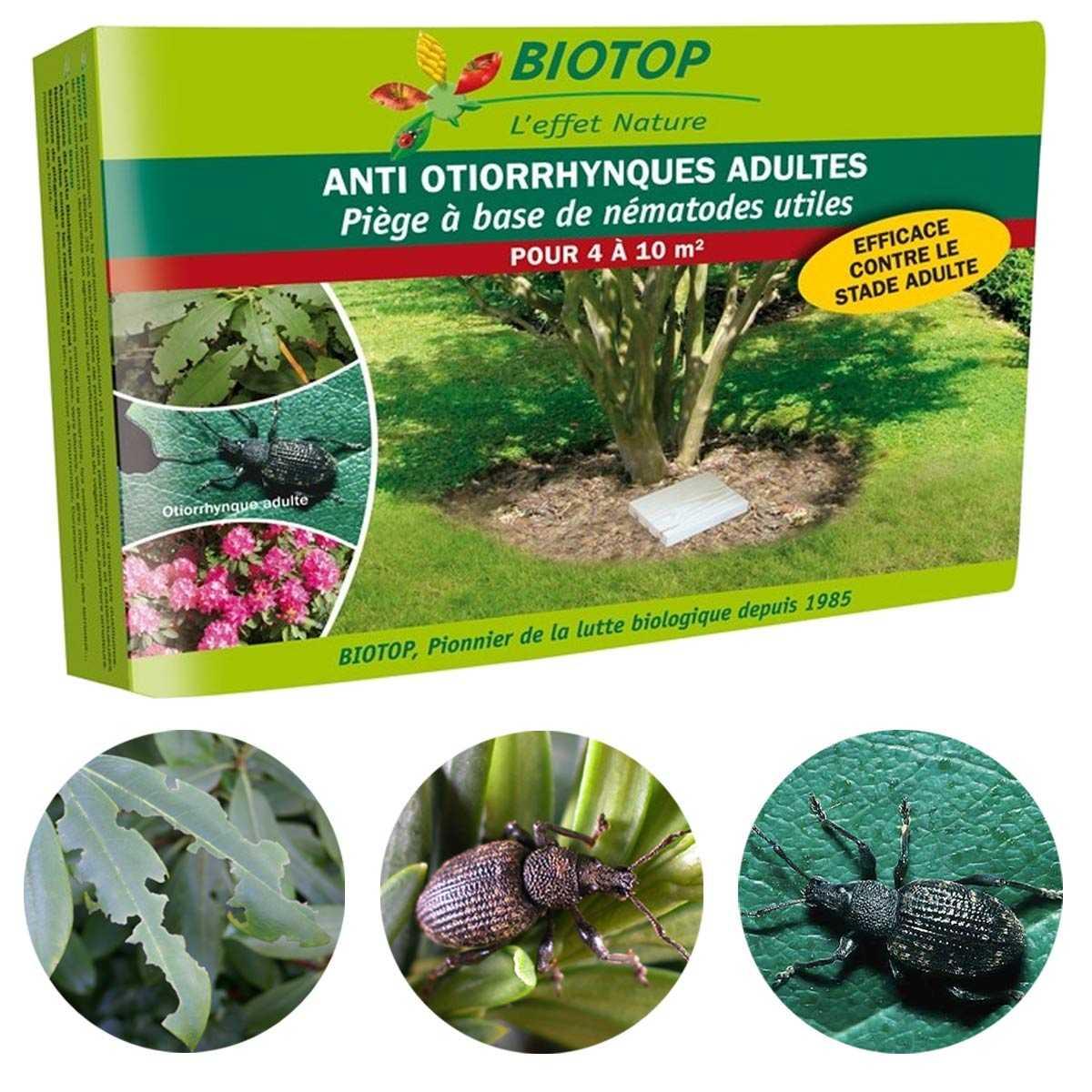 medicament anti nematode medicament pentru viermi rotunzi și helminți