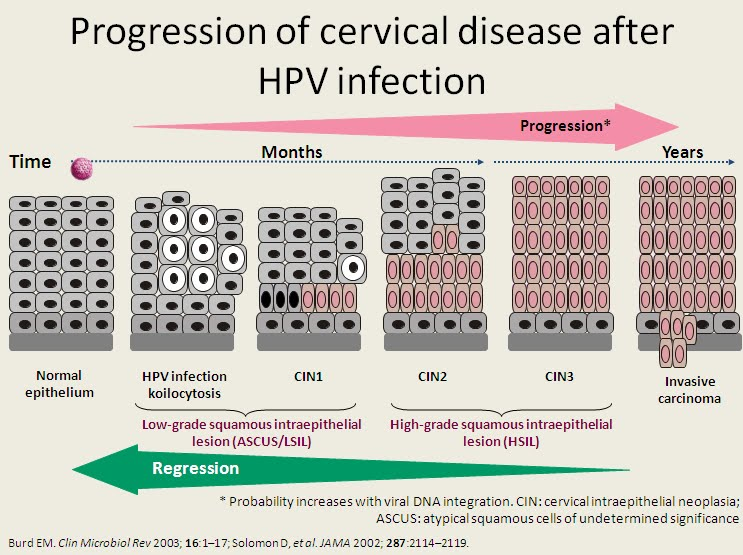 how many hpv cause cancer hpv impfung ablauf