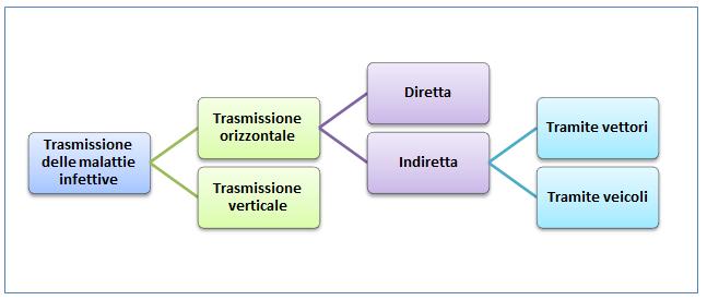 papilloma virus modalita di trasmissione
