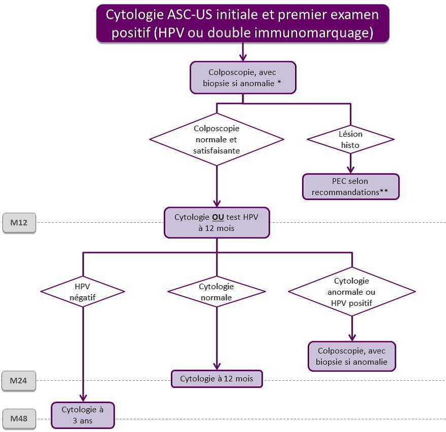papillomavirus et frottis veruci exofitice sau genitale