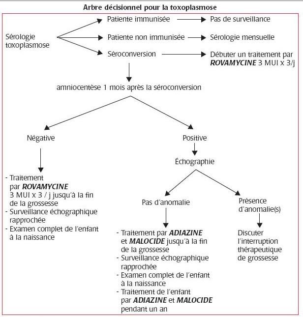 papillomavirus pendant grossesse ugola allungata papilloma