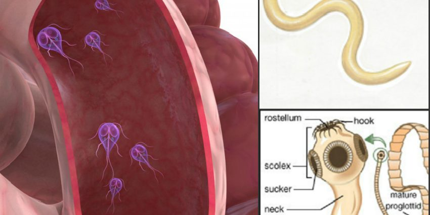 can hpv cause urethral cancer