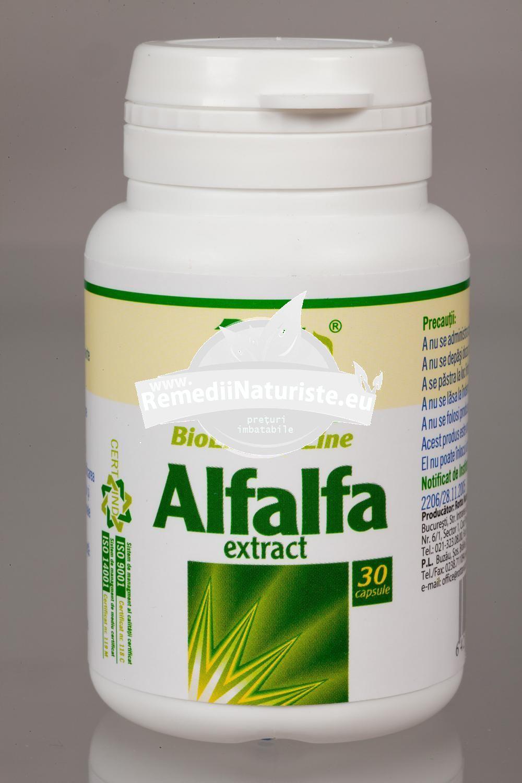 Cele mai bune medicamente naturiste pt. tratamentul paraziților intestinali   csrb.ro