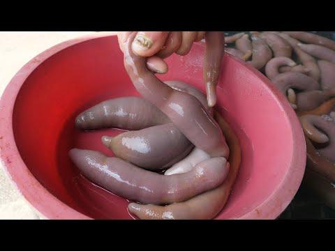 Preparate pentru viermi pentru prevenirea oamenilor, Îndepărtați paraziții umani