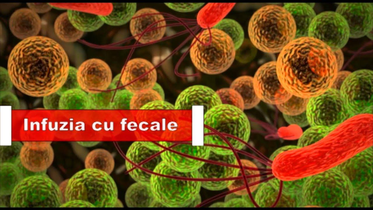 reapariția infecției giardiei