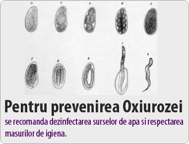 papillomavirus negli uomini