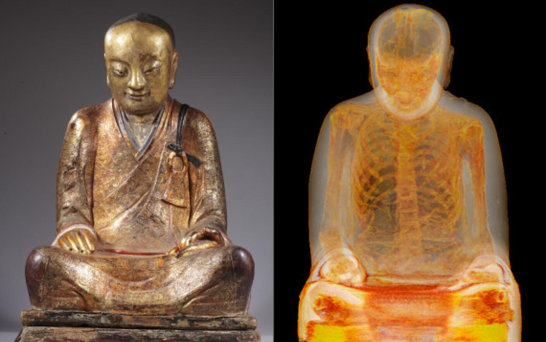 vierme de buddha