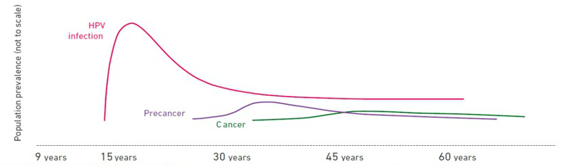 hpv 16 and cancer risk