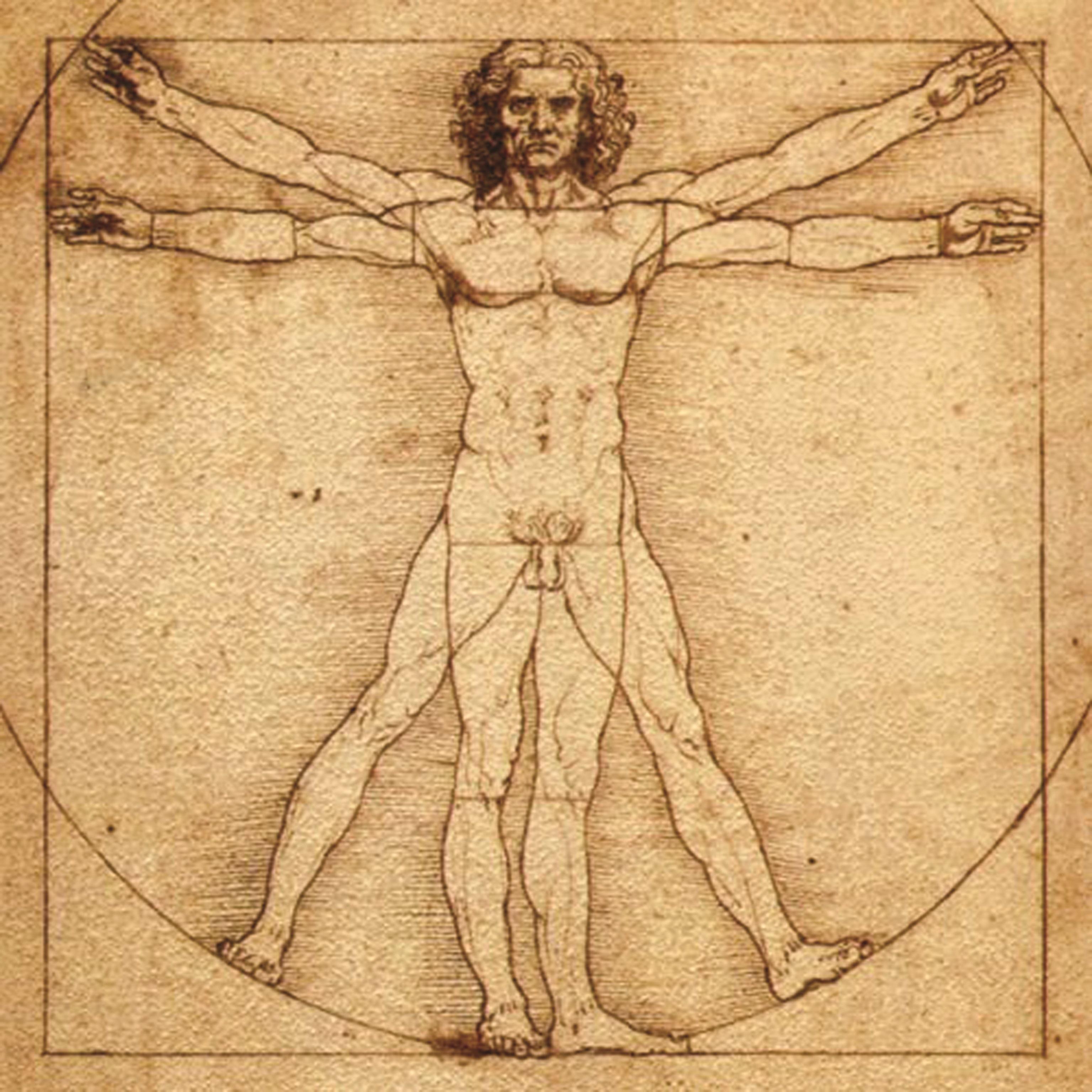 tenă în corpul uman)