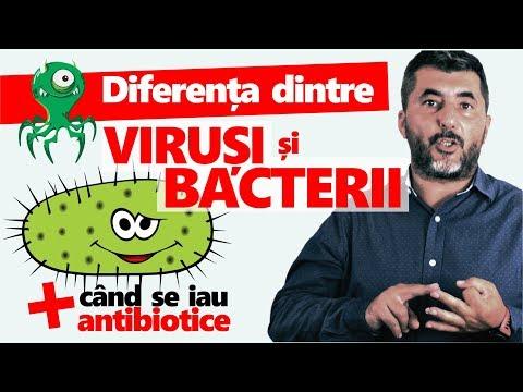 parazit cu spectru larg cum să tratezi viermi la oameni