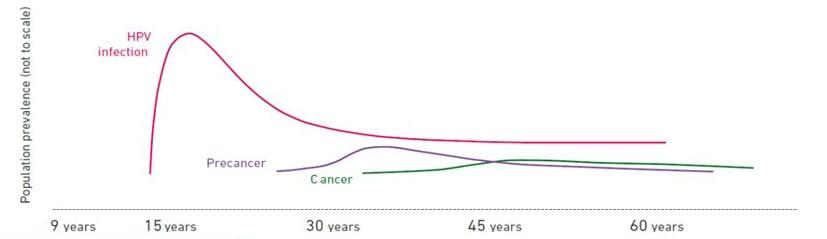 hpv cancer female