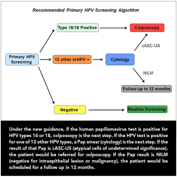 human papillomavirus hpv detection
