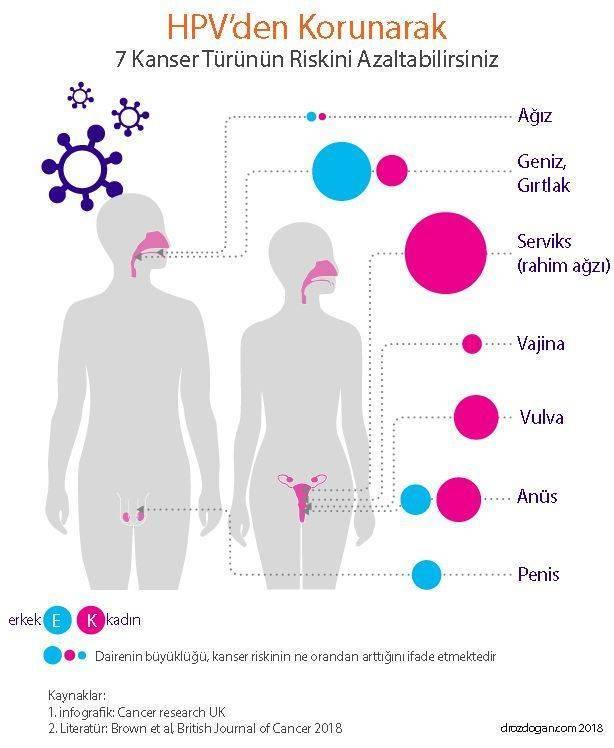 hpv etkisi nedir