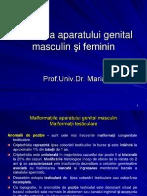 prognosticul condilomului genital hpv cdc