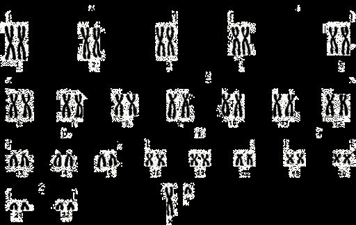 Ce tipuri de viermi sunt cromozomii umani. Cromozom - Wikipedia
