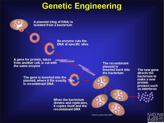 Cancer and genetic engineering - csrb.ro