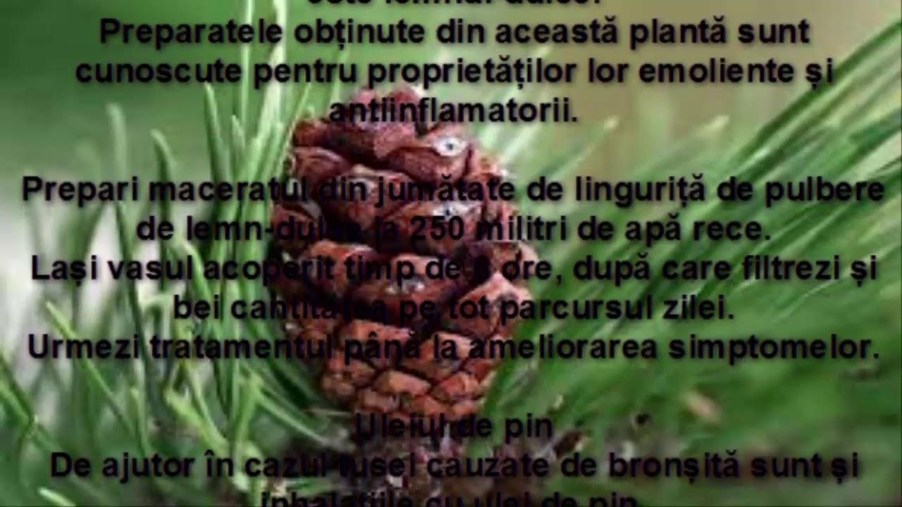 tratament bronsita adulti papillary urothelial mean