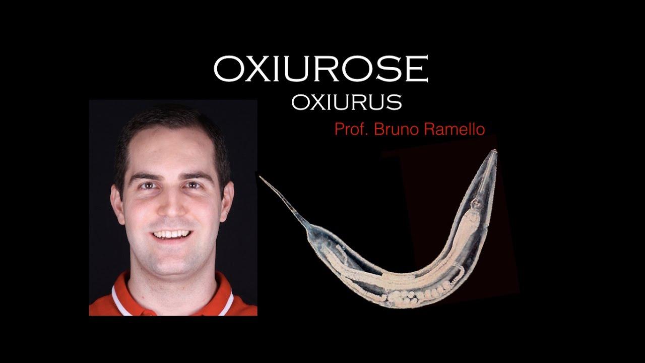 Verme oxiurus nome cientifico, Dientamoeba Fragilis diéta tippek - csrb.ro