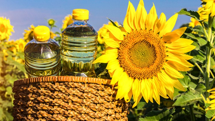 tratamentul floarea soarelui pentru viermi medicacion para oxiuros en ninos