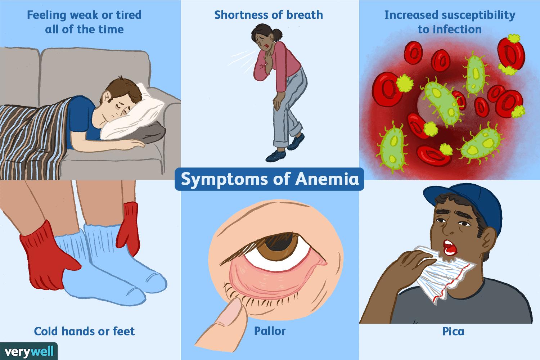 enterobius vermicularis prevencion y control
