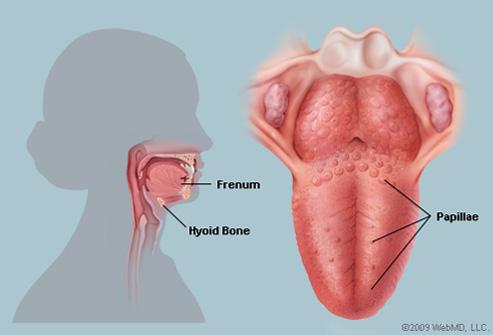 mouth warts cure condiloame în gura căii de infecție