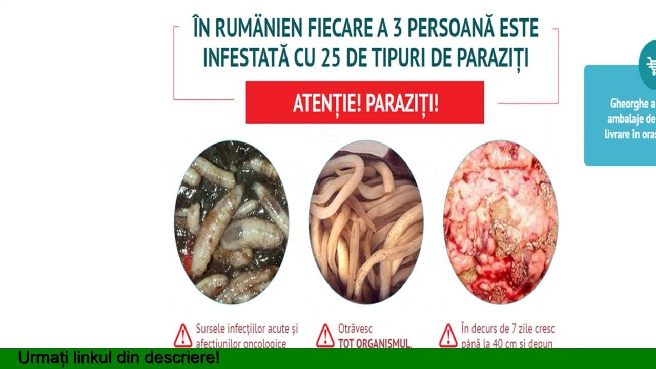 infecții cu viermi umani