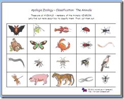 zoologie de tenă
