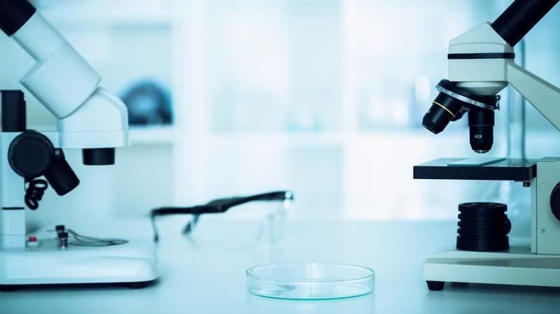 condilom plat al biopsiei colului uterin