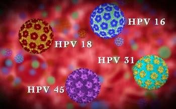 Humani papiloma virus simptomi kod zena