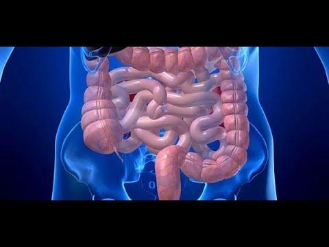 cancer de colon biodescodificacion akasha