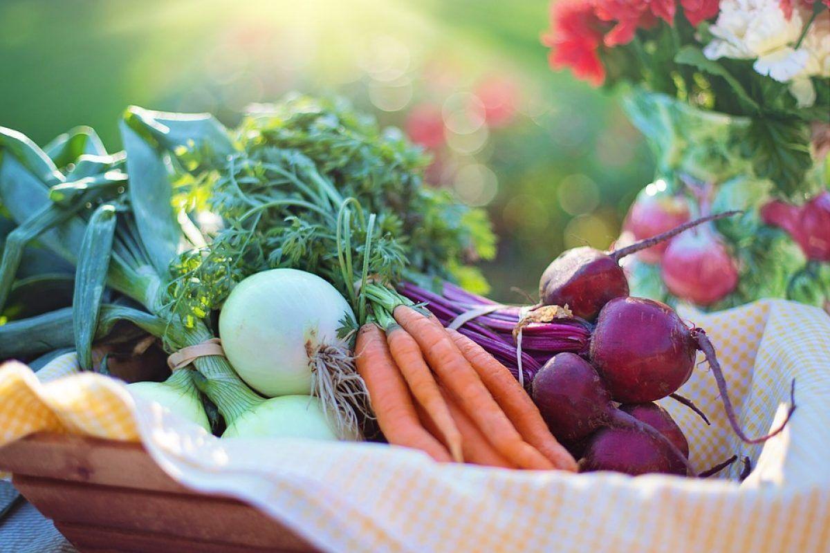 detoxifiere colon in mod natural