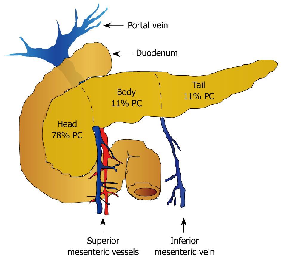 DIAGNOSTIC DILEMMAS IN PANCREATIC ADENOSQUAMOUS CARCINOMA. CASE REPORT