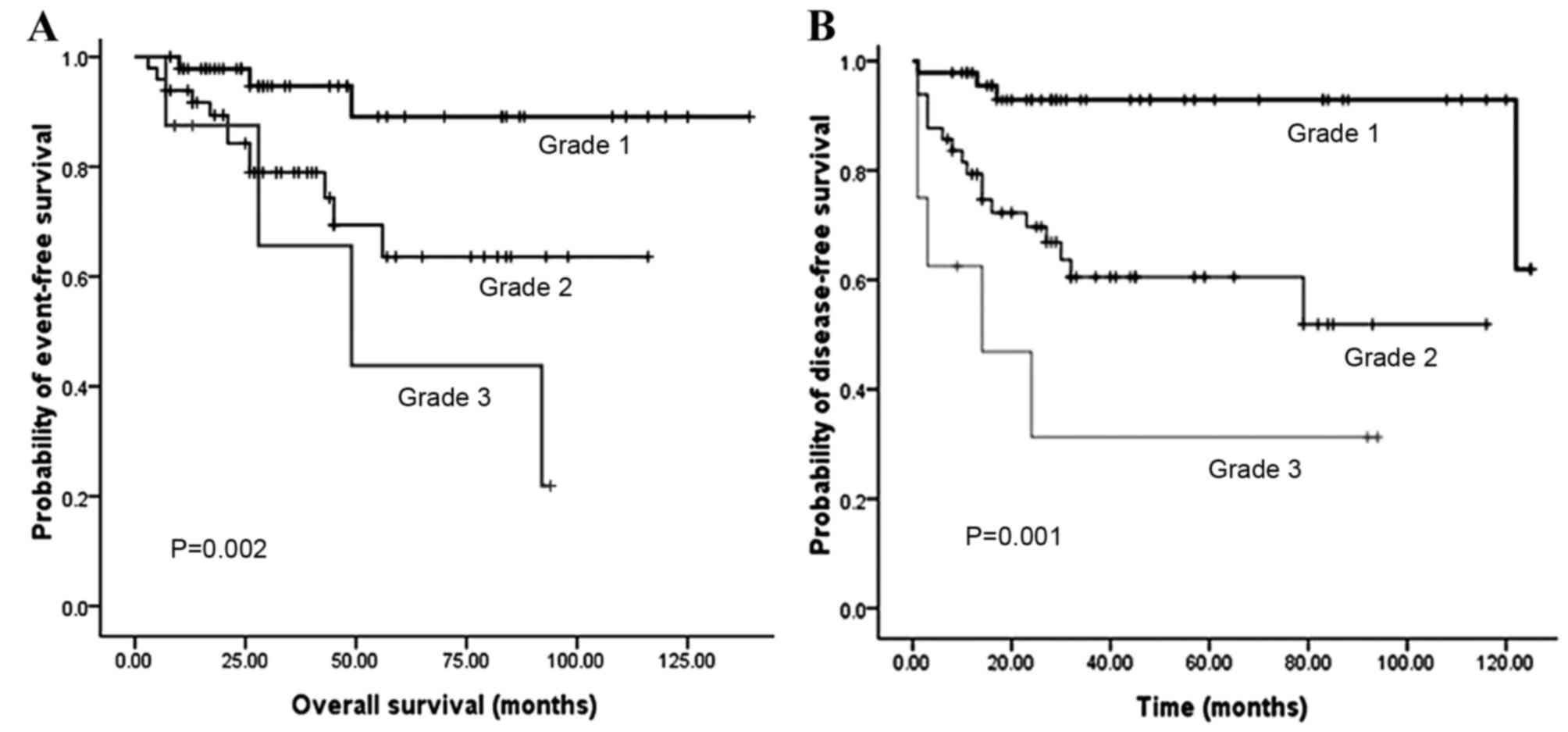 Neuroendocrine cancer survival rate. Neuroendocrine cancer survival rate