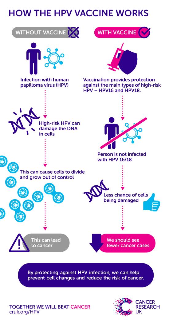 Human papillomavirus prevention and control,, Human papillomavirus prevention infection