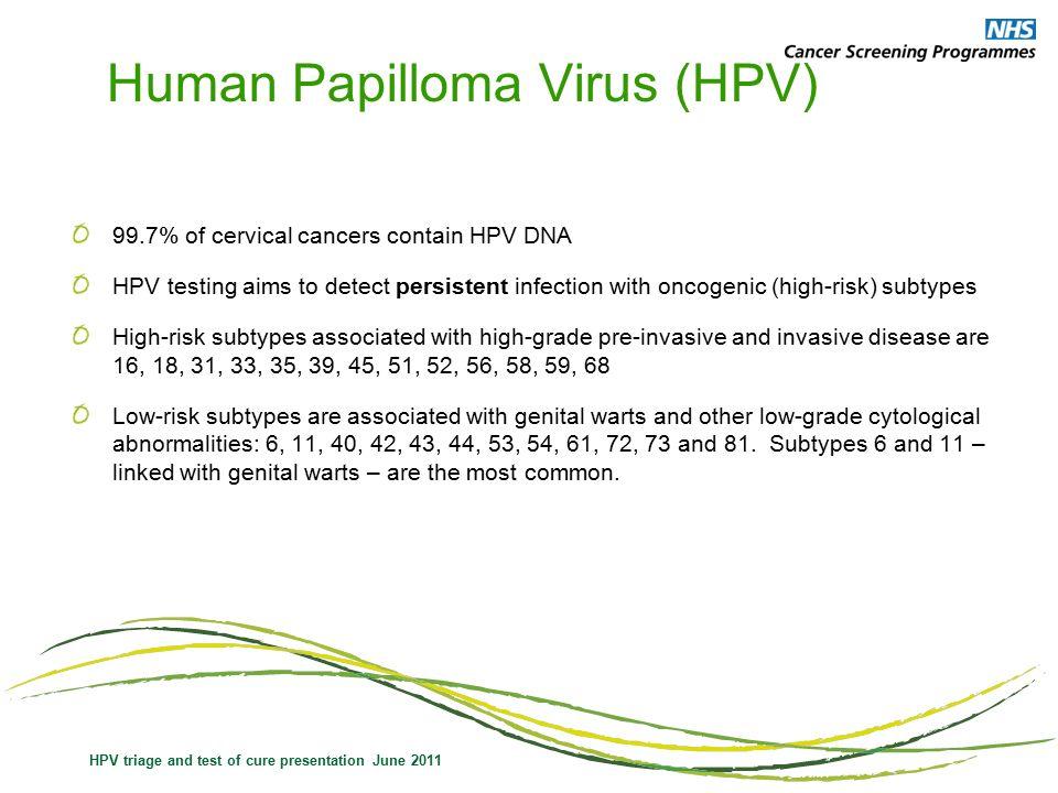 Hpv cure future. HIV/AIDS | csrb.ro